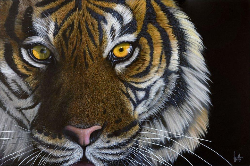 Image 1 of Tiger Eyes