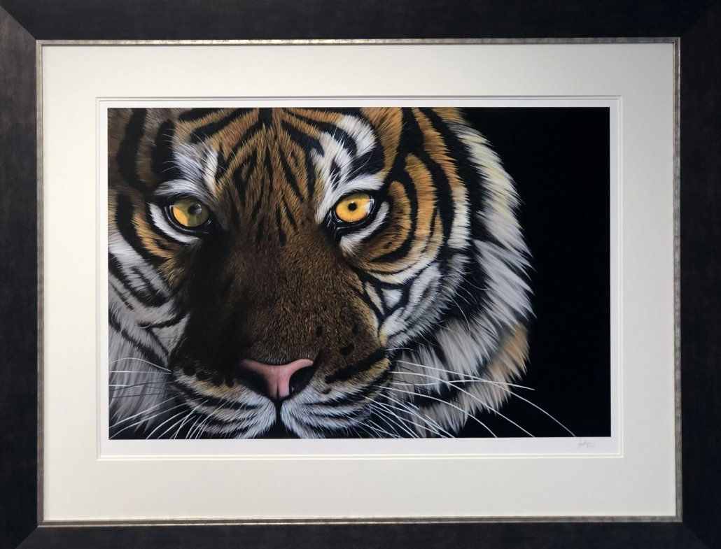 Image 2 of Tiger Eyes
