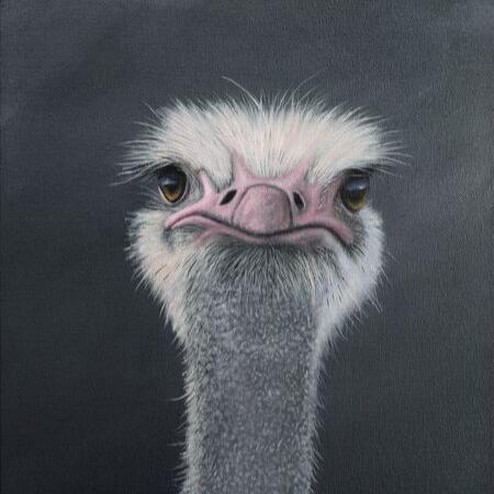 Image 1 of We Are Not Amused (Wacky Wildlife)